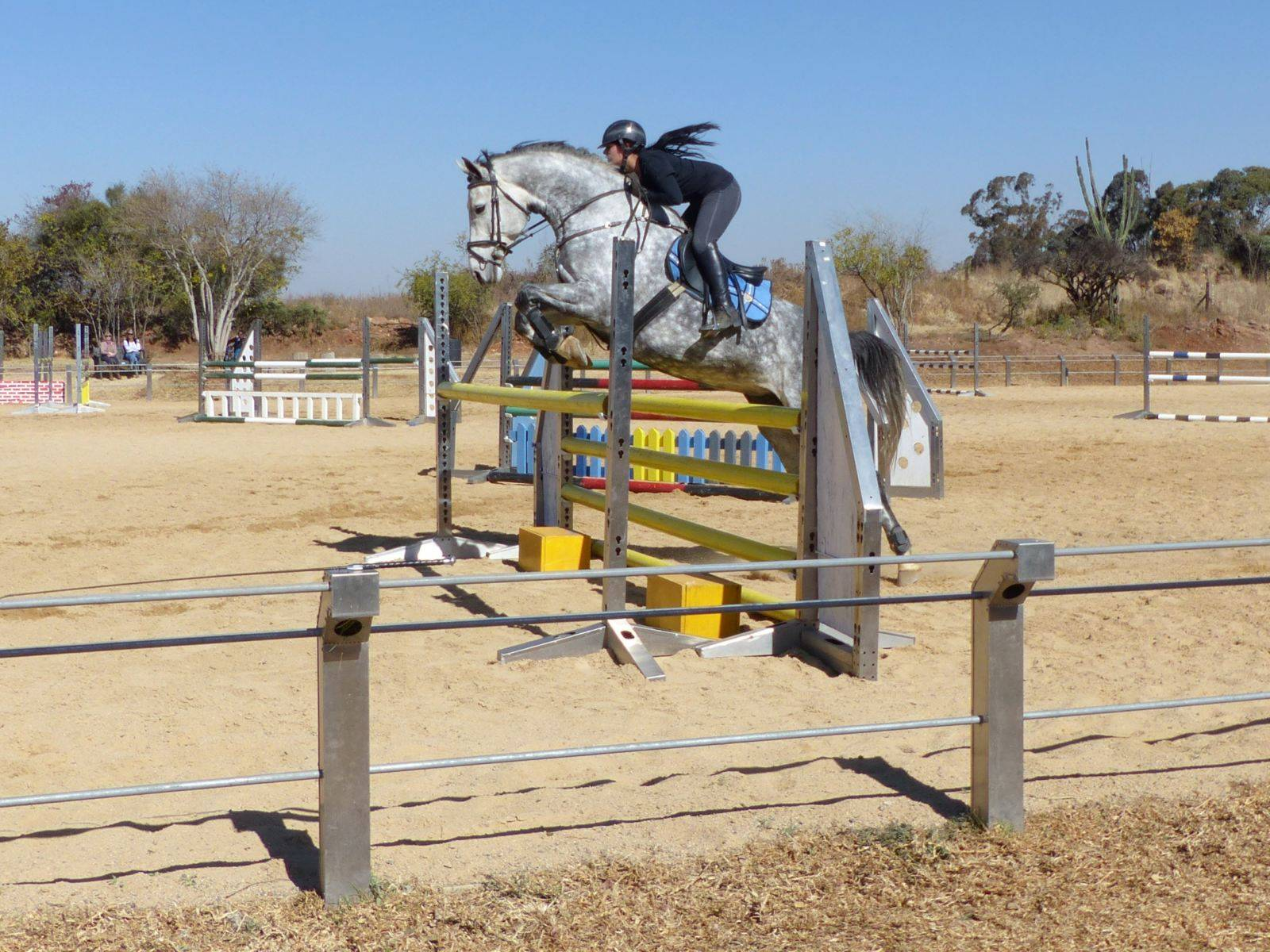 Horse Show Jumping in South Africa