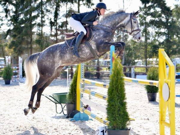 Jumping Mare D. Adermie
