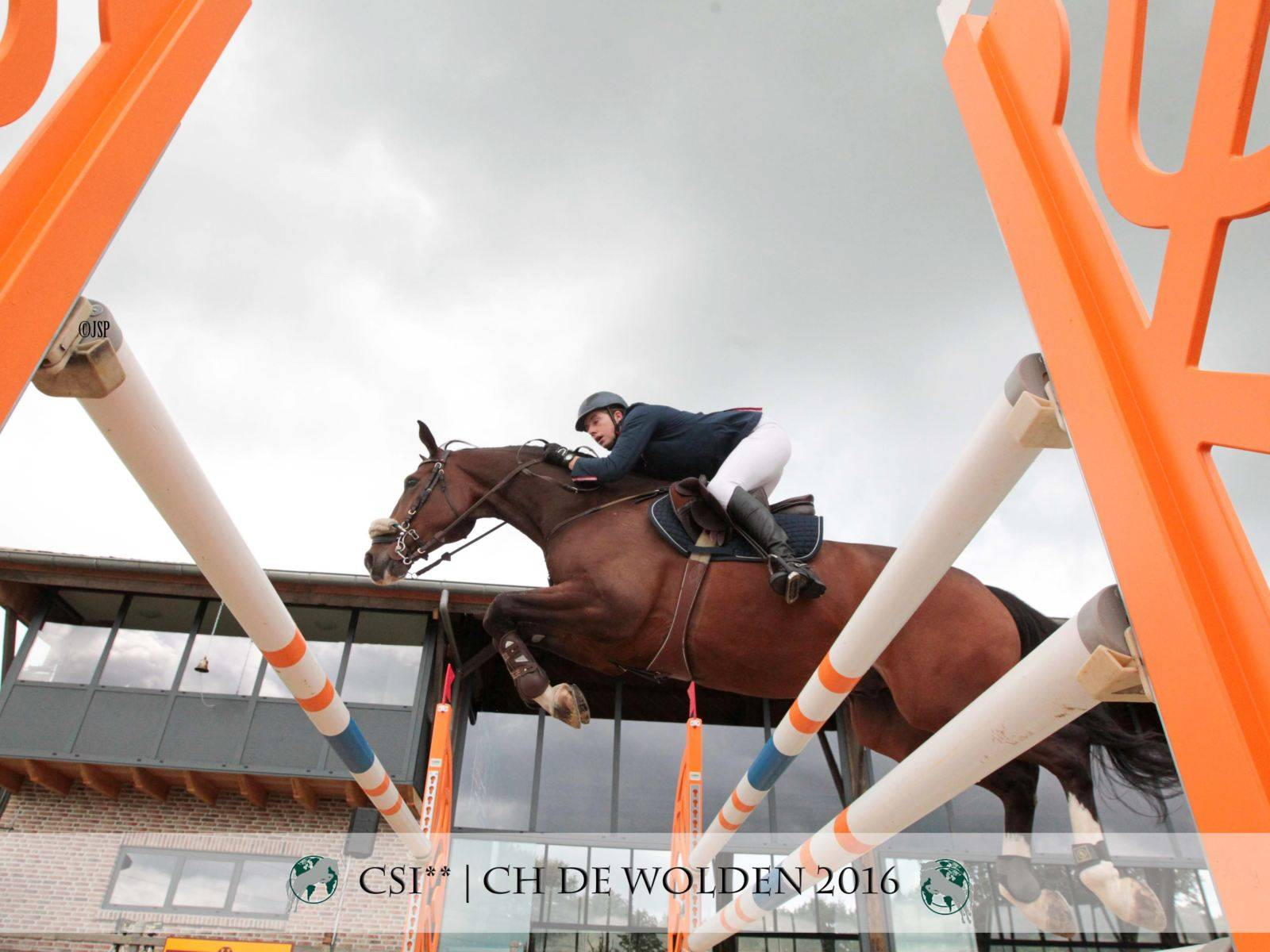 Jumping Horses Equestrian Japan