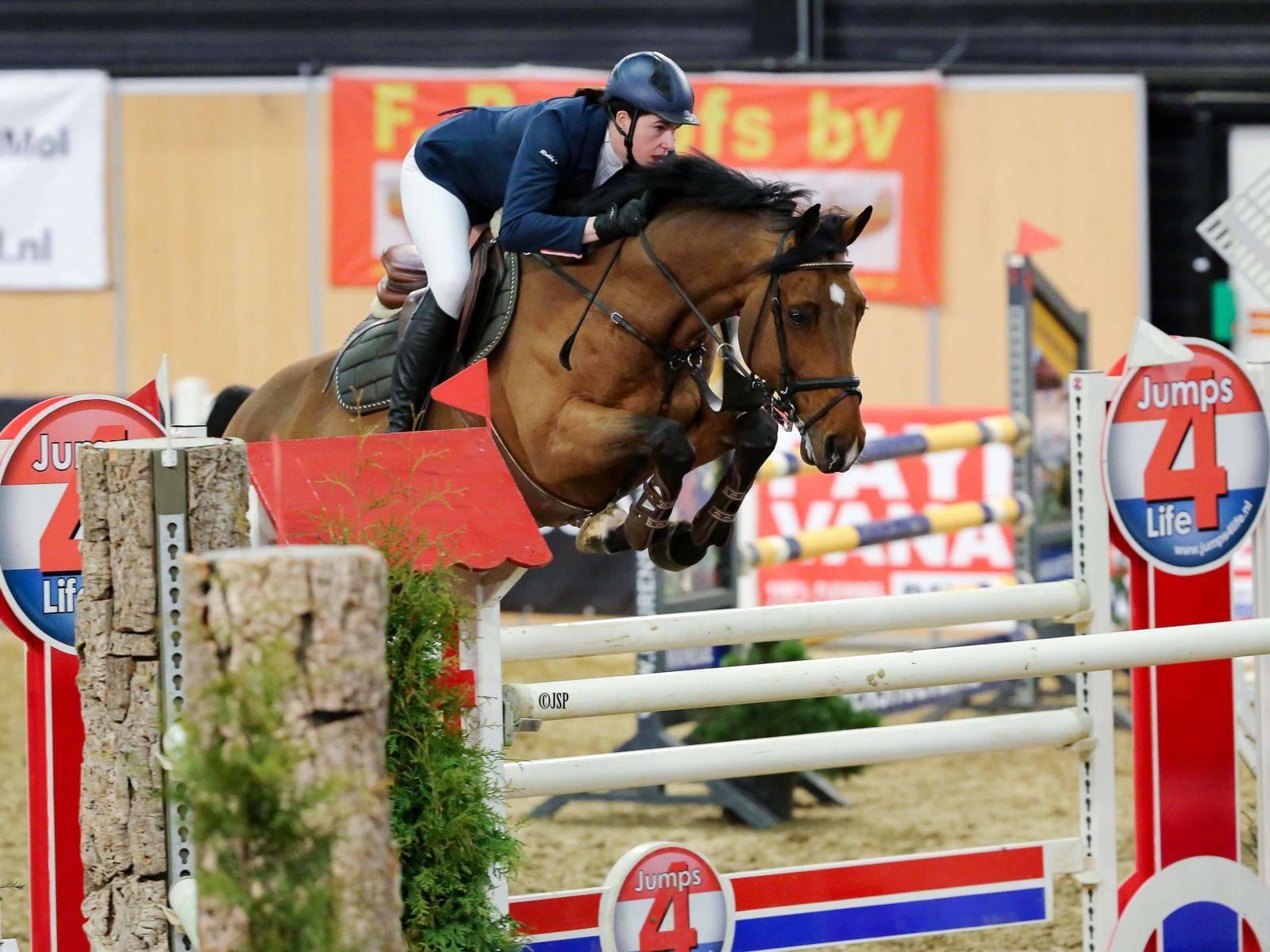 Show Jumping Horses for Sale California Arizona