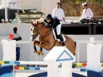 Warmblood Show Jumping Kuwait Tendermona