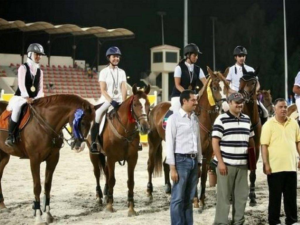 Show Jumping Mare in Kuwait